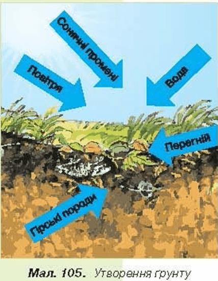 Як утворюється ґрунт, ґрунт