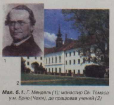Г.Мендель