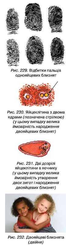 Вдновлення сперми
